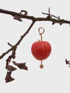 appelkrok