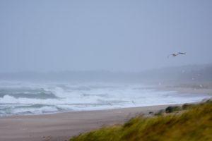 15_stormigt hav